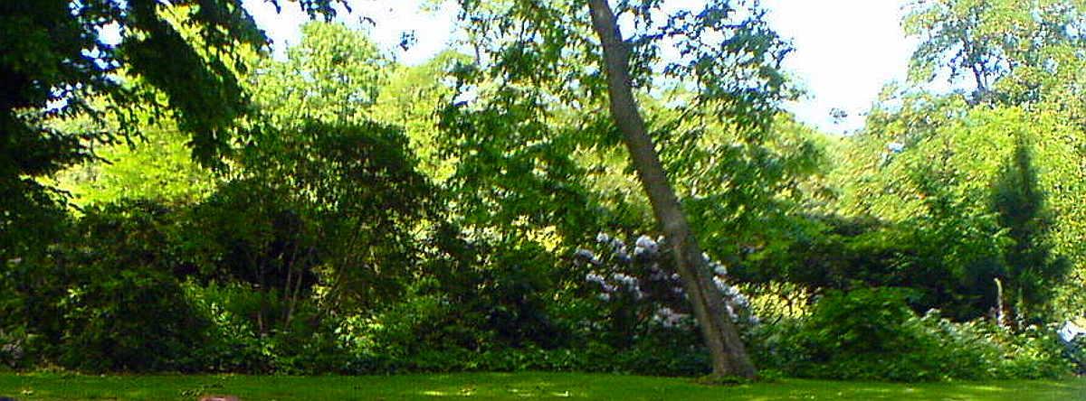 Studiebesök i Lunds Botaniska trädgård